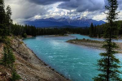 Tool Paintings - Evening Walk Along the Athabasca - Jasper National Park by Wayne Moran