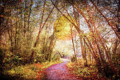Photograph - Evening Walk Along The River Trail by Debra and Dave Vanderlaan