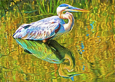 Photograph - Everglades Blue Heron by Dennis Cox WorldViews