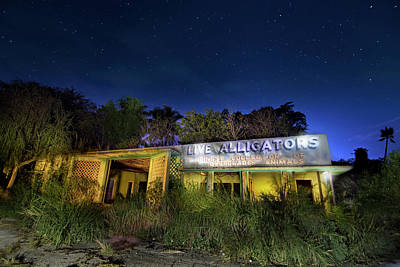 Photograph - Everglades Gatorland Collectors Edition by Mark Andrew Thomas