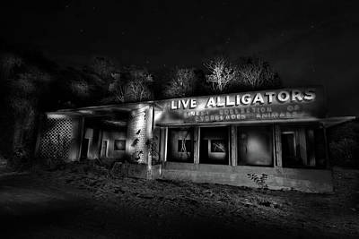Photograph - Everglades Gatorland Ruins by Mark Andrew Thomas