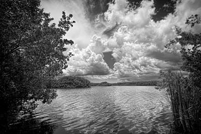 Everglades Lake - 0278abw Art Print by Rudy Umans