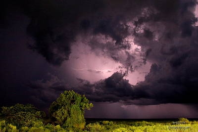 Photograph - Everglades Lightning by Greg Allore