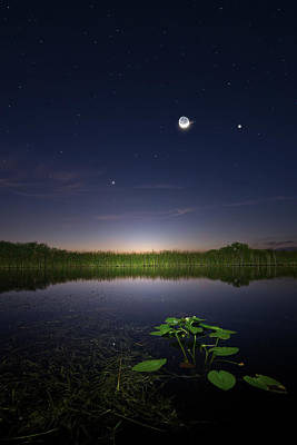 Photograph - Everglades Moon And Stars by Mark Andrew Thomas