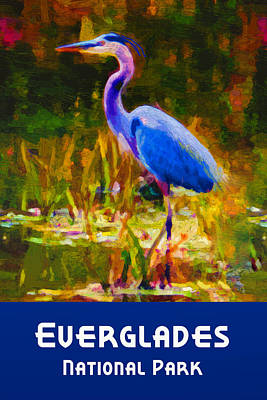 Digital Art - Everglades National Park by Chuck Mountain