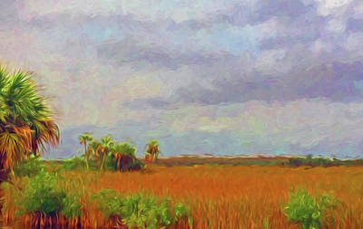 Photograph - Everglades Sawgrass, Palms And Hammocks by Ginger Wakem