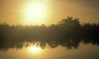 Photograph - Everglades Slough Sunrise by John Burk