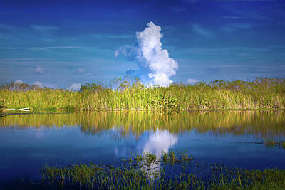 Photograph - Everglades Smoke by Mark Andrew Thomas