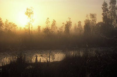 Photograph - Everglades Sunrise by John Burk