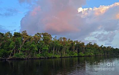 Photograph - Everglades Sunrise by Nanette OHara