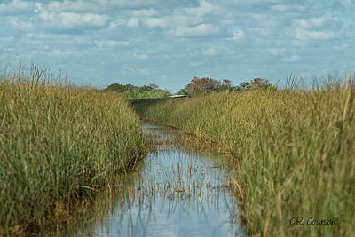 Photograph - Everglades Trail by CR Courson