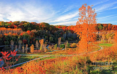 Photograph - Evergreen Brick Works Autumn by Charline Xia