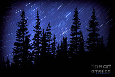 Photograph - Evergreen Forest Star Trails by John Stephens