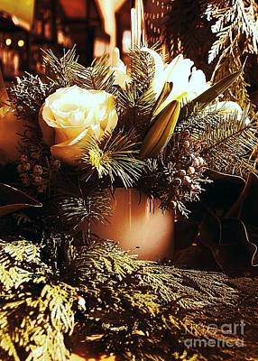 Photograph - Evergreen Holiday by Jenny Revitz Soper
