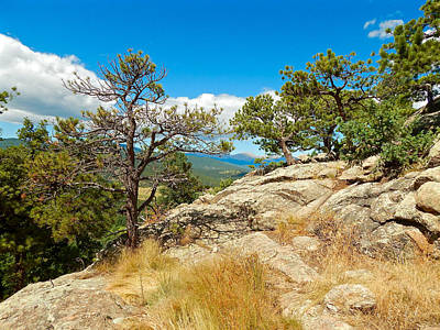 Photograph - Evergreen Mountain Summit by Dan Miller