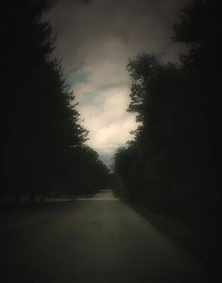 Photograph - Evergreen Road by Cynthia Lassiter