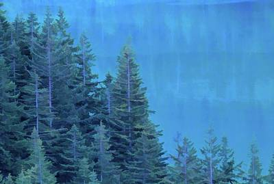 Mixed Media - Evergreens And Reflections by Dan Sproul