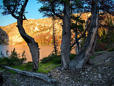 Photograph - Everson Lake 2 by Leland D Howard