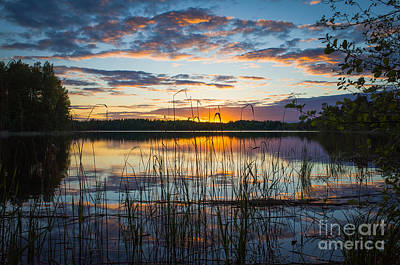 Photograph - Every Day Has An End by Ismo Raisanen
