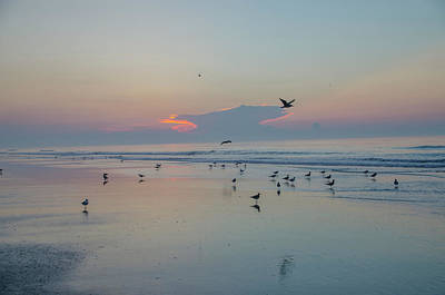 Wildwood Photograph - Every One Is Flocking To Wildwood by Bill Cannon