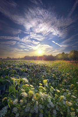 Photograph - Every Sunrise Needs Its Day by Phil Koch