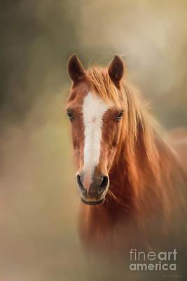 Everyone's Favourite Pony Art Print