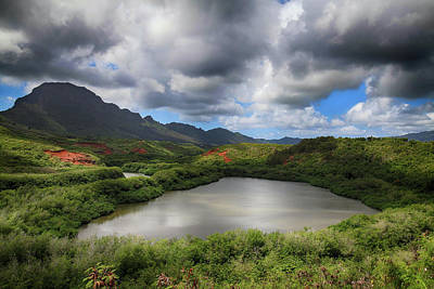 Kauai Photograph - Everything by Laurie Search