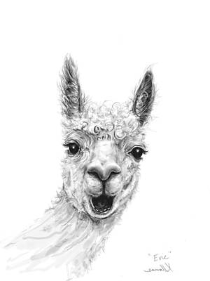 Animals Drawings - Evie by K Llamas