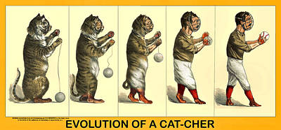 Evolution Of A Cat-cher Art Print