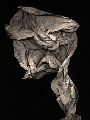 Sculpture - Evolve by Peter Cutler