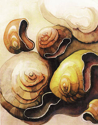 Painting - Evolving Shells by Lynda Lehmann