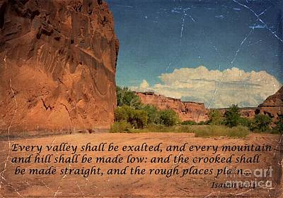 Photograph - Exaltation In Canyon De Chelley by Debby Pueschel