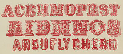 Typographic Drawing - Examples Of Letters  by English School