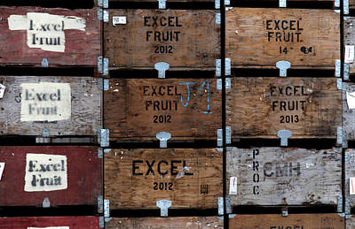 Photograph - Excel Fruit by Lora Lee Chapman