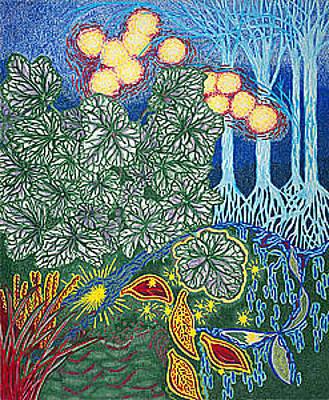 Giclee Drawing - Exciting Harmony Art Prints And Gifts Autumn Leaves Botanical Garden Park Plants by Baslee Troutman