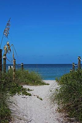 Photograph - Exclusively Captiva by Michiale Schneider