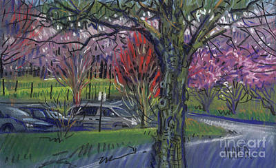 Blooming Drawing - Executive Park by Donald Maier