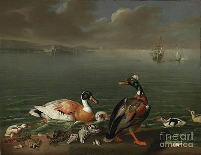 Sea Painting - Exotic Ducks And Ducklings by MotionAge Designs