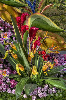 Photograph - Exotic Flowers by David Zanzinger