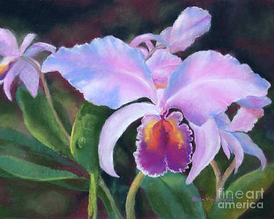 Painting - Exotic Pink Orchid by Hilda Vandergriff