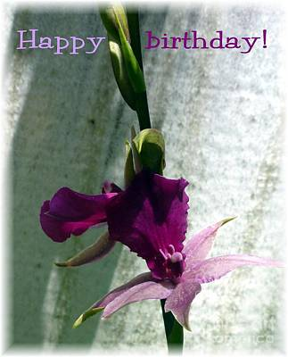 Photograph - Exotic Purple Birthday Wishes by Barbie Corbett-Newmin