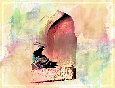 Gate Watercolor Photograph - Exotic Travel Pigeons In Palaces India Rajasthan 1e by Sue Jacobi