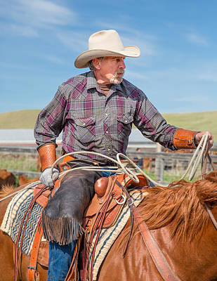Sorrel Photograph - Experienced Cowboy by Todd Klassy