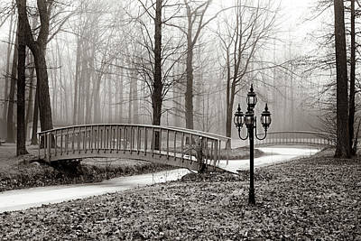 Photograph - Exploring Narnia by Denise Harrison