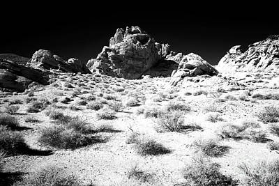 Photograph - Exploration In The Valley by John Rizzuto