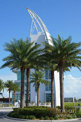 Photograph - Explore Behind The Palm Trees by Jennifer White