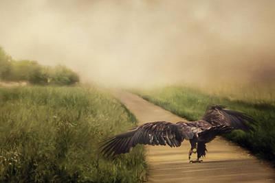 Bird On The Ground Photograph - Explore New Things by Jai Johnson