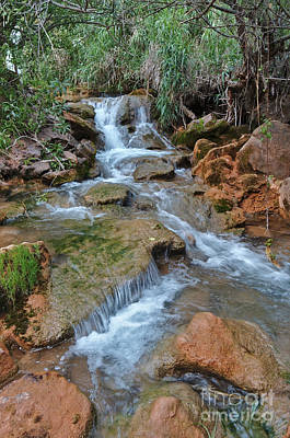 Photograph - Exploring Queda Do Vigario Waterfall In Alte by Angelo DeVal