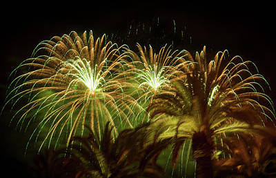 Photograph - Explosive In Green Fireworks by Bonnie Follett