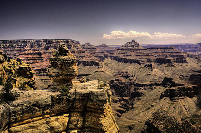 Photograph - Exposed Grand Canyon Formations by Don Wolf